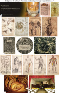 cuerpo-anatomia-montaje-y-capitalismo-01